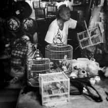 Bird seller at Street Bird Garden.